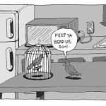 03_Bird Cage